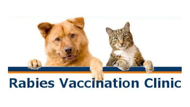Rabies Clinics offered from January 2021- April 2021